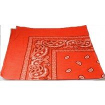 Orange Paisley Bandana Head Scarf