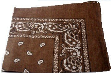 Brown Paisley Bandana Head Scarf
