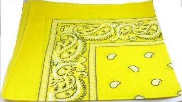 Yellow Paisley Bandana Head Scarf
