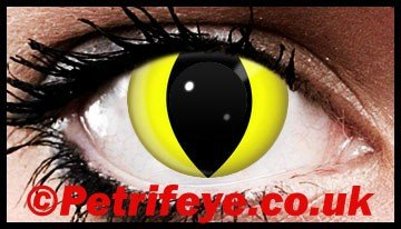 Yellow Cats Eyes Crazy Wild Contact Lenses